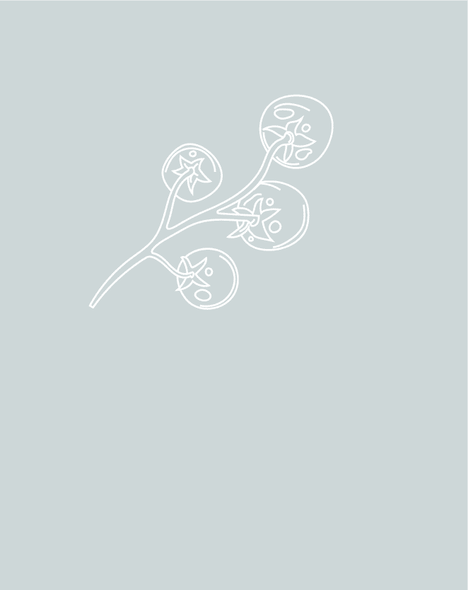 Illustratie | Restaurant Vlaar | Go2People Websites